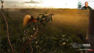 Penyelamatan Hutan Papua dan Maluku Tak Hanya Menyangkut Kelestarian Cenderawasih